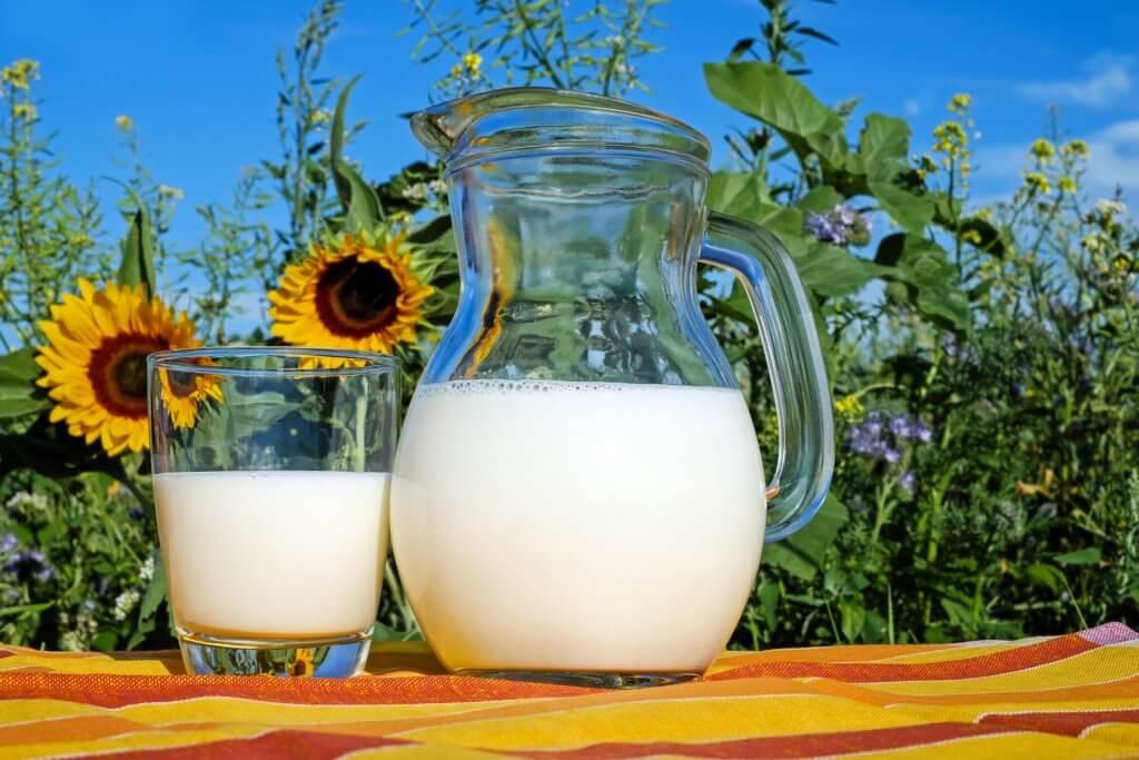 Laktoza i nietolerancja laktozy - skąd się bierze butelka mleka 2