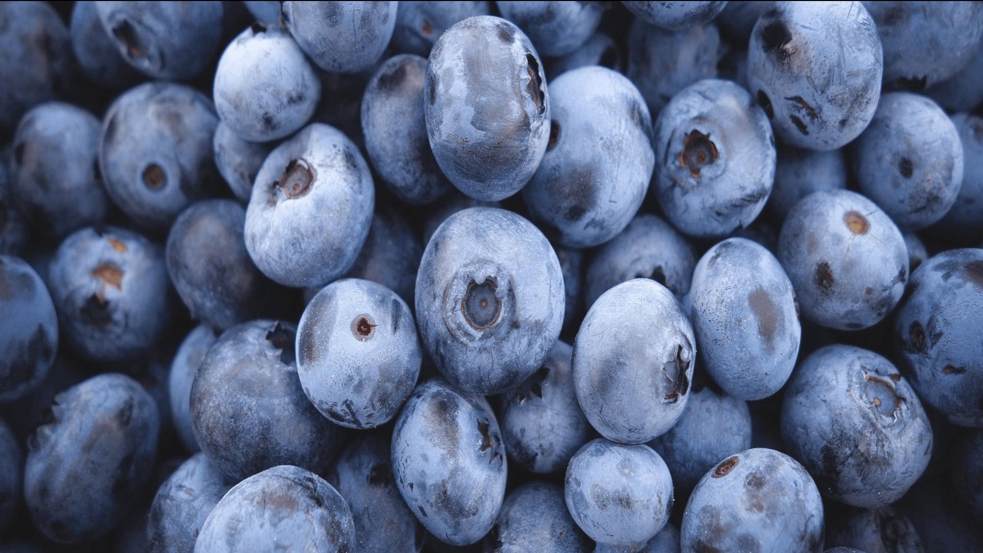 borówki  owoce wspomagające odchudzanie