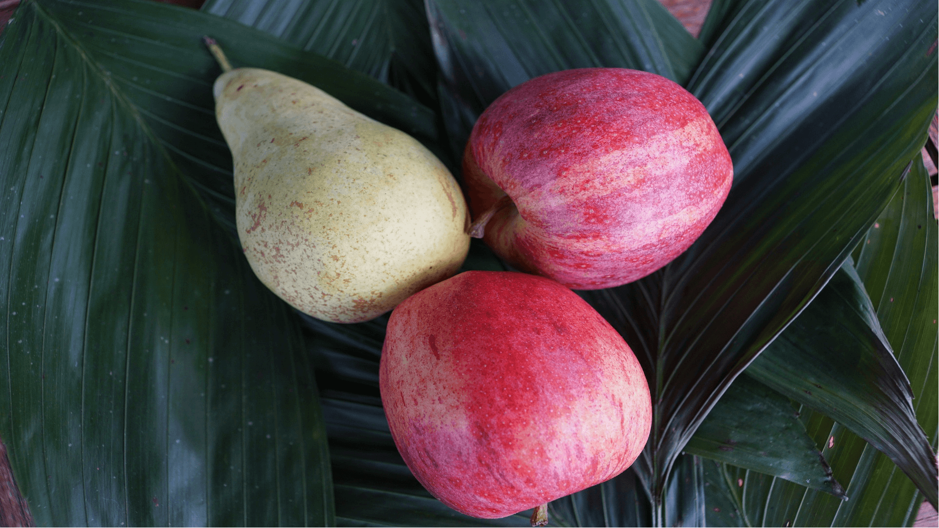 jabłka i gruszki owoce wspomagające odchudzanie