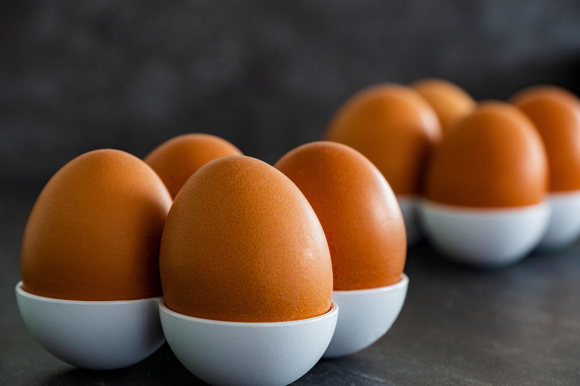 kurze jajka
