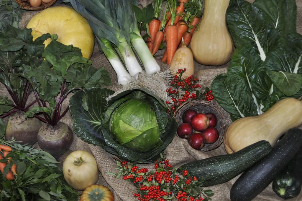 skrobia modyfikowana a GMO2